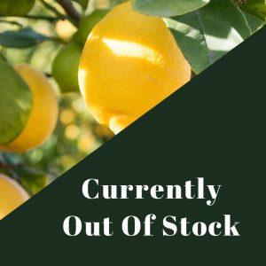Meyer Lemon Olive Oil out of stock